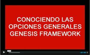 conociendo las opciones generales de genesis framework