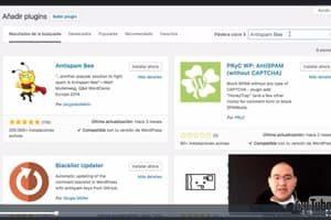 Cómo proteger tu sitio web de los comentarios Spam – AntiSpam Bee plugin